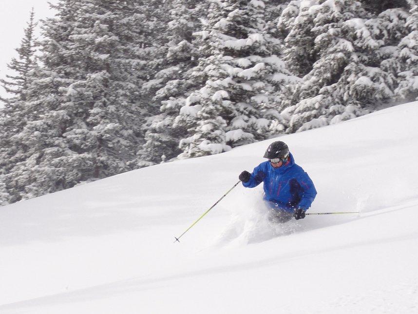 Ski Model