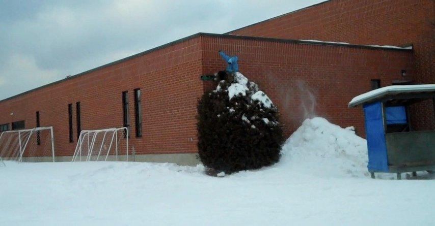 Wallride above tree