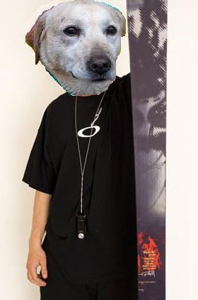 Dog Person