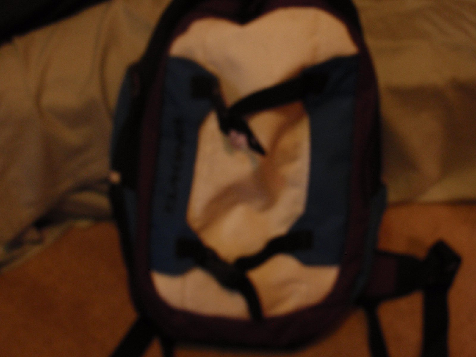 DAKINE MISSION BACKPACK FOR SALE USED