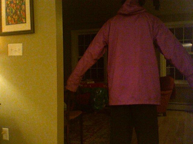 Burton jacket back