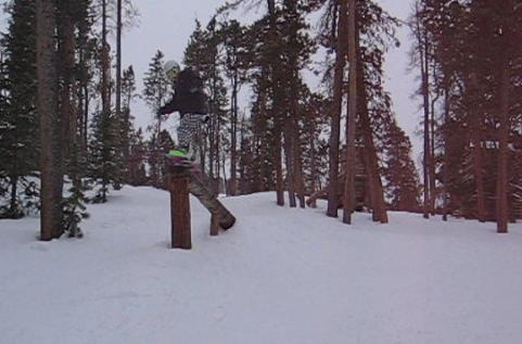 Keystone, some tree jibs :)