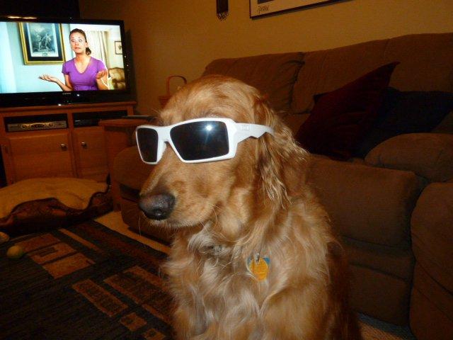 Fs Oakley glasses