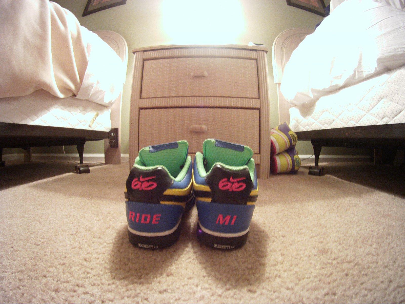 Nike 6.0s