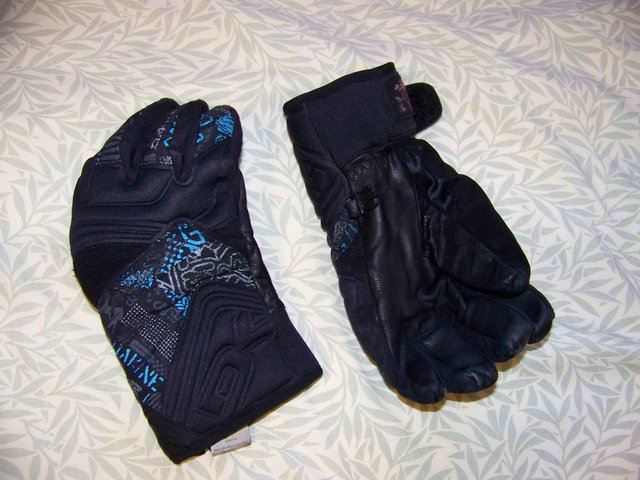 Fs: dakine gloves