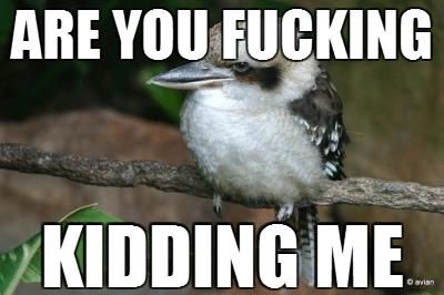 Birdfuck