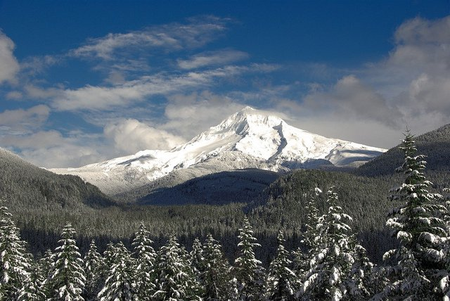 Snowy Timberline, Almost June