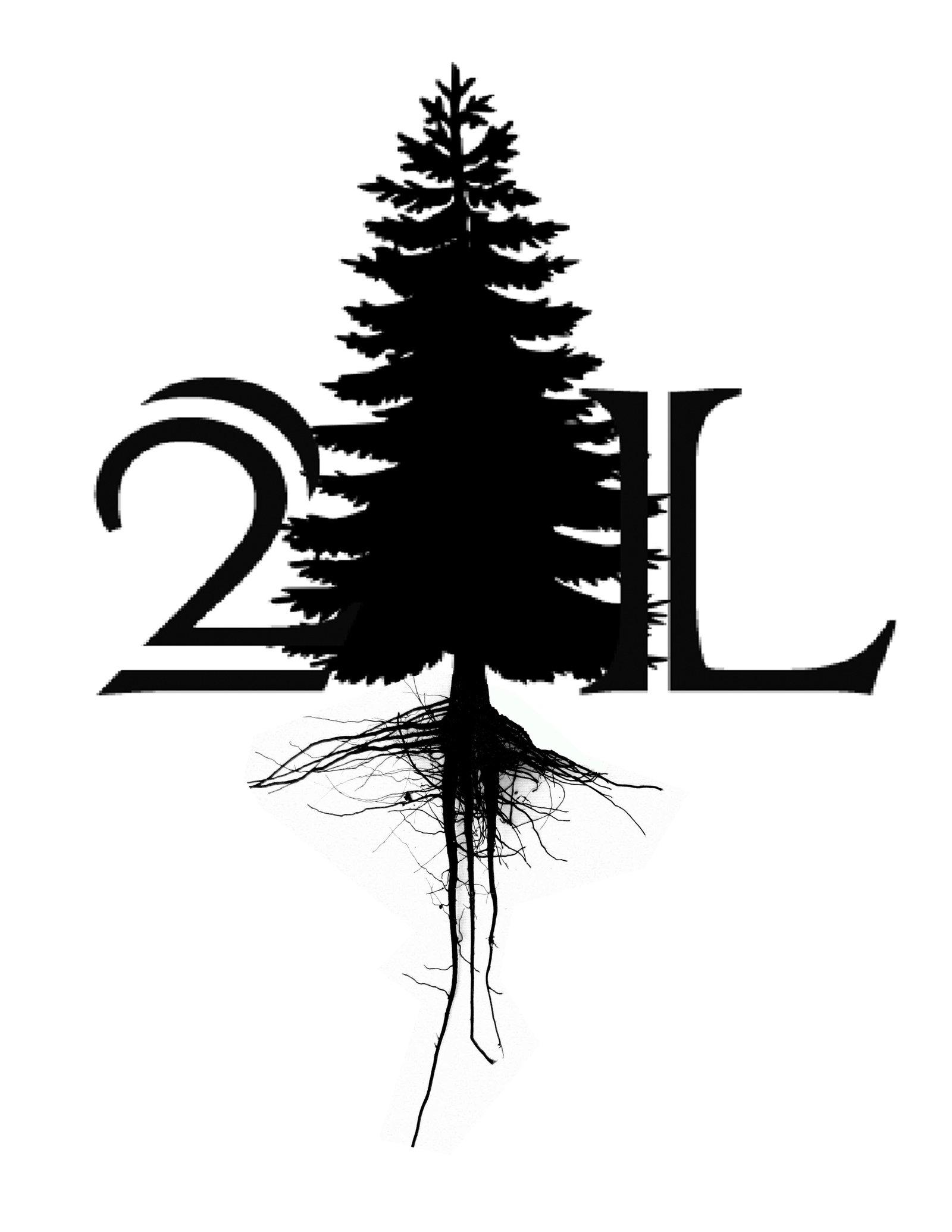 2L 2011