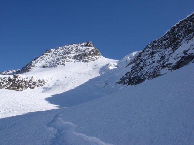 Freshies down the glacier
