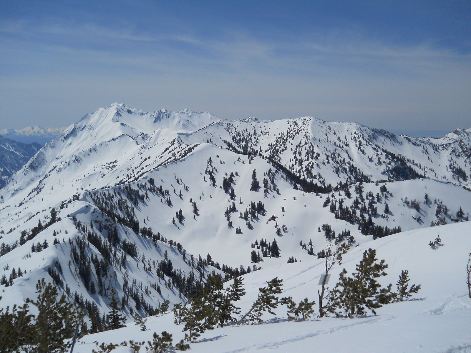 Top of grizzly gulch