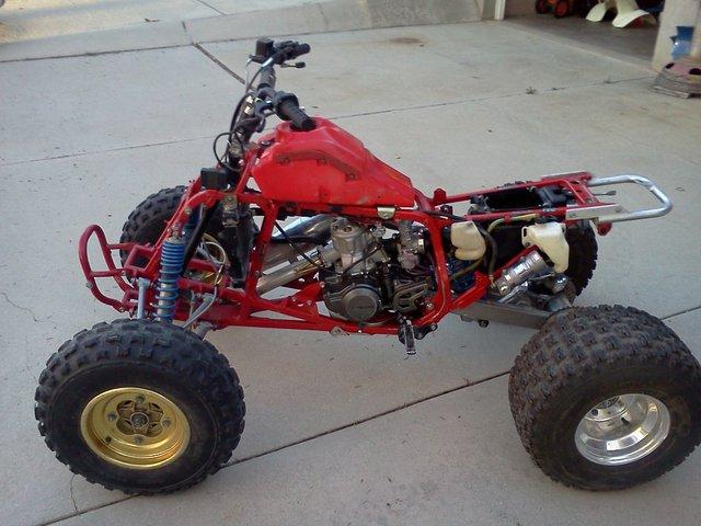 250r Nude