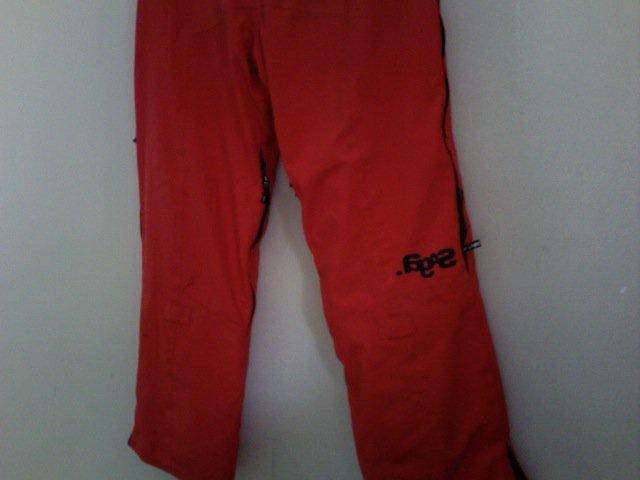 Back of saga anomie pants