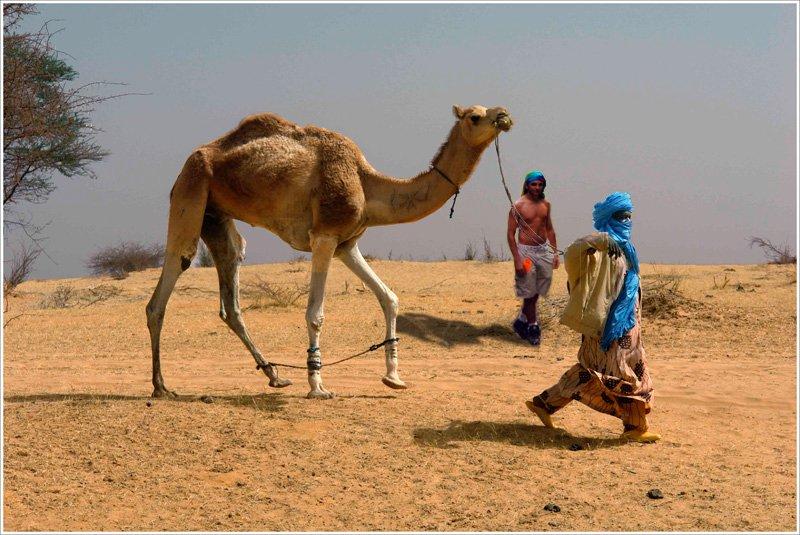 Me in the desert