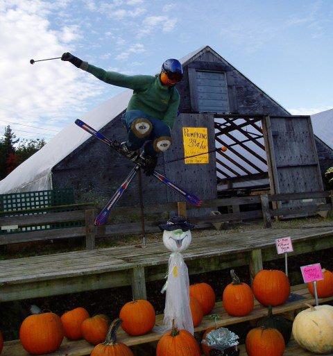 Pimp Scarecrow