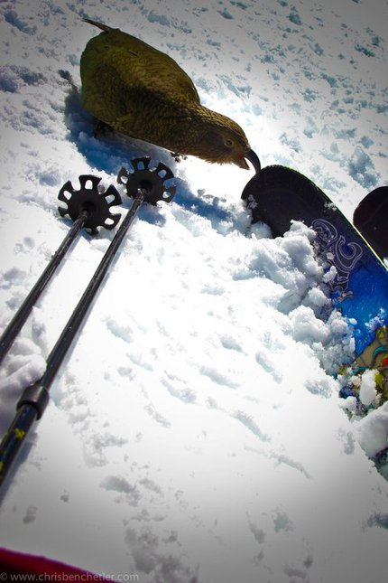 New Atomic Ski 2013