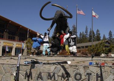 A Mammoth Showdown