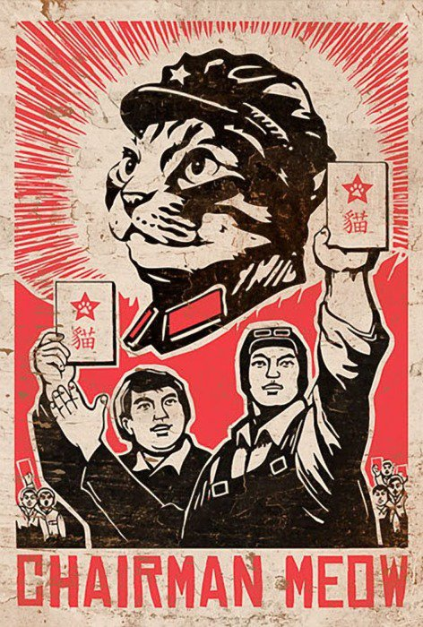 chairman meow.jpg