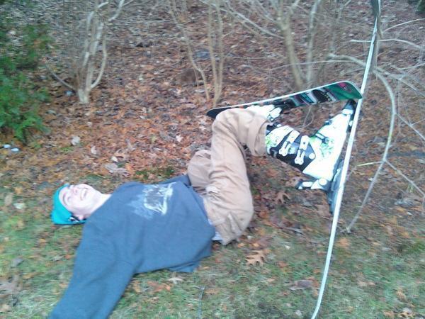 back yard tree crash