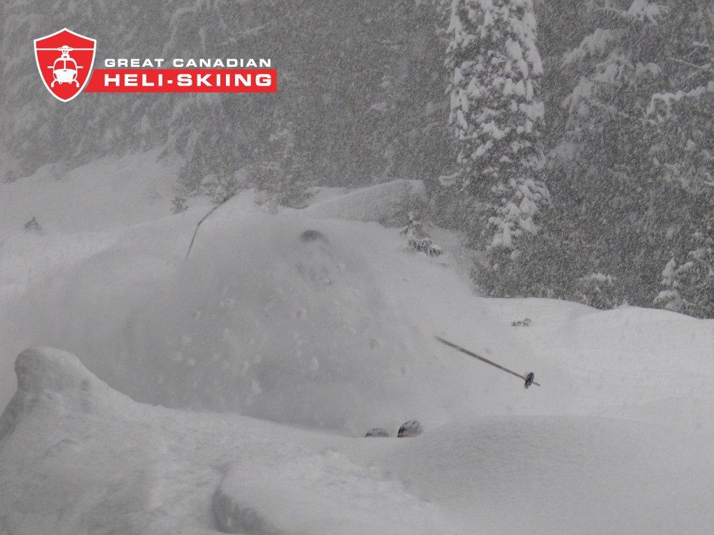Great Canadian Heliskiing deep powder.jpg
