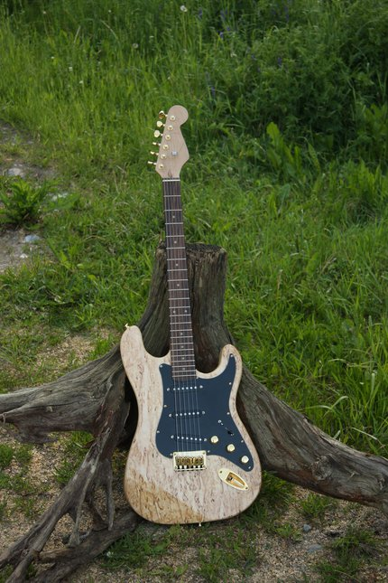 Self-made guitar