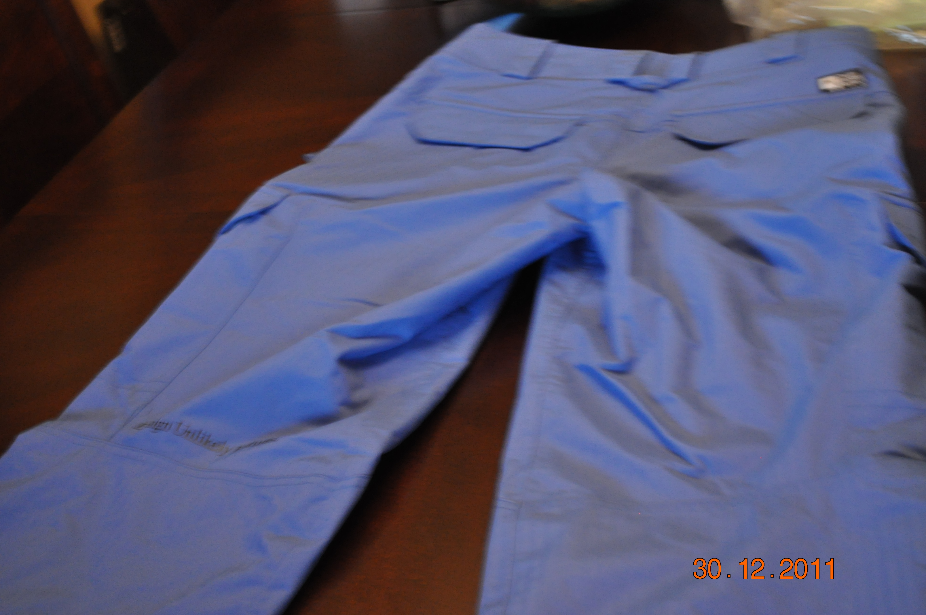 Blue asset pant (back)