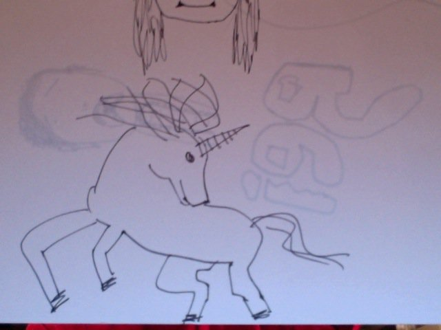 this is a unicorn