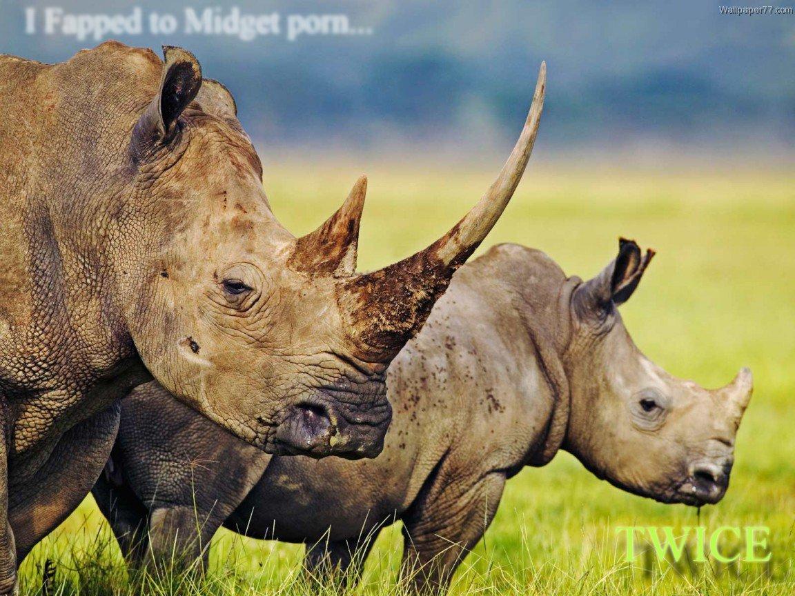 rhino anti hipster