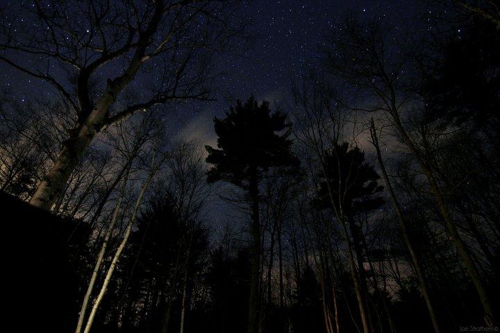 Stars in the Backyard