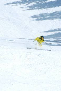 Aspen 2010