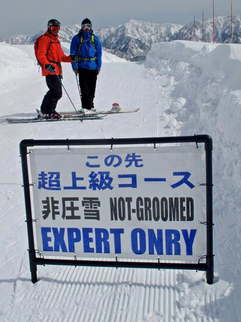 Expert's Onry