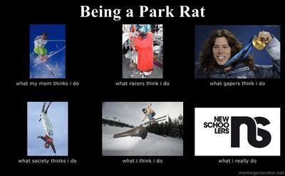 being a park rat meme