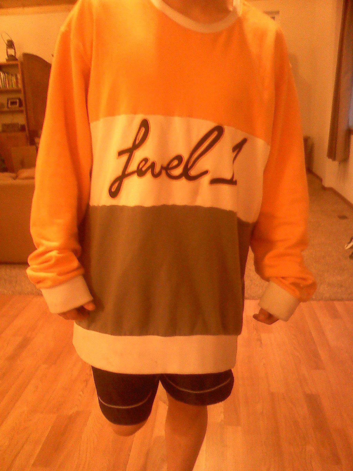 level 1 colab