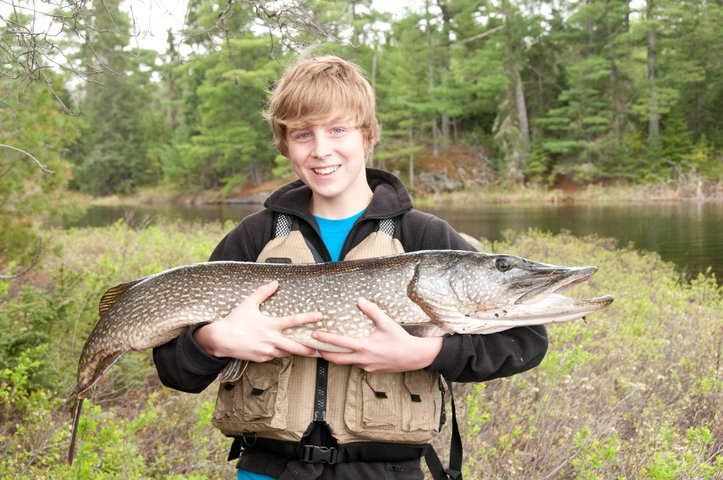 4 Foot Northern Pike