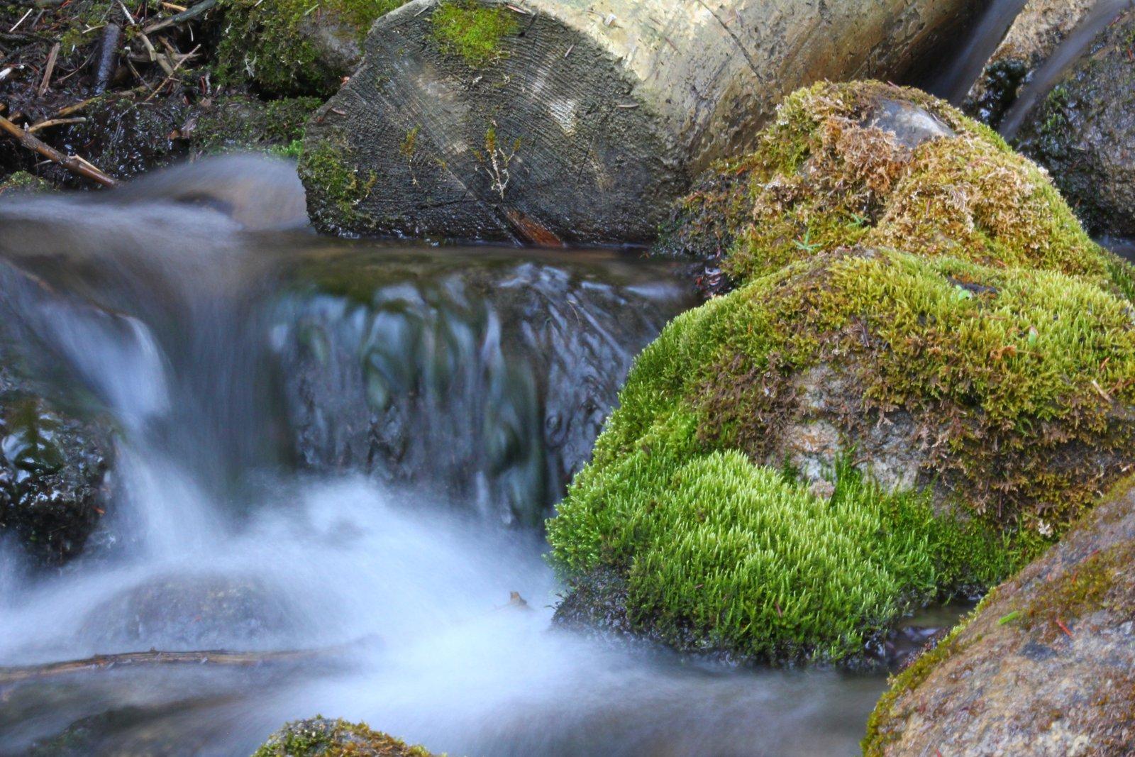 Low Shutter Creek