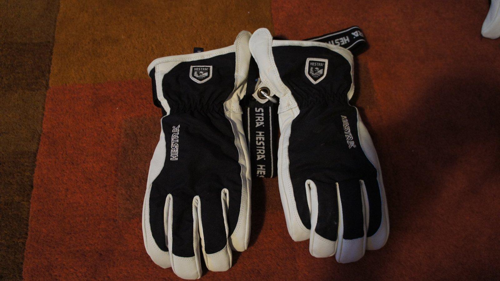 New Hestra Alpine Pro Patrol Gloves