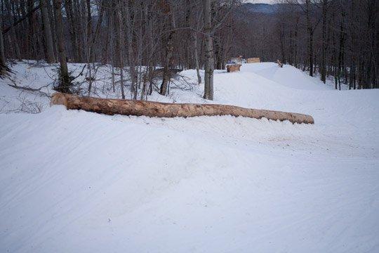 tree rails
