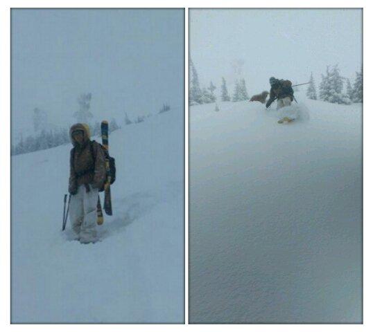Pow Shred @ Alpine Meadows