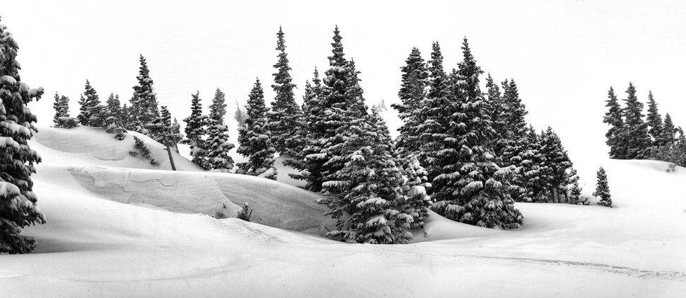 Breckenridge Pines