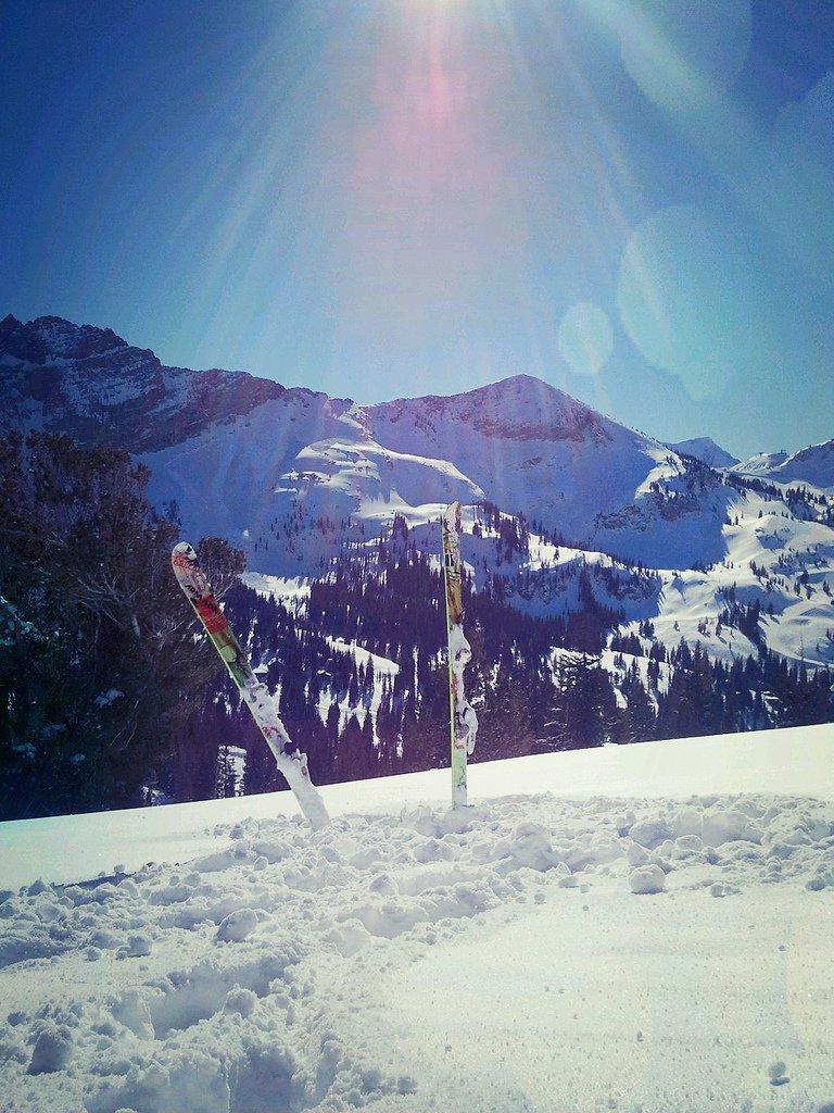 Alta Skis