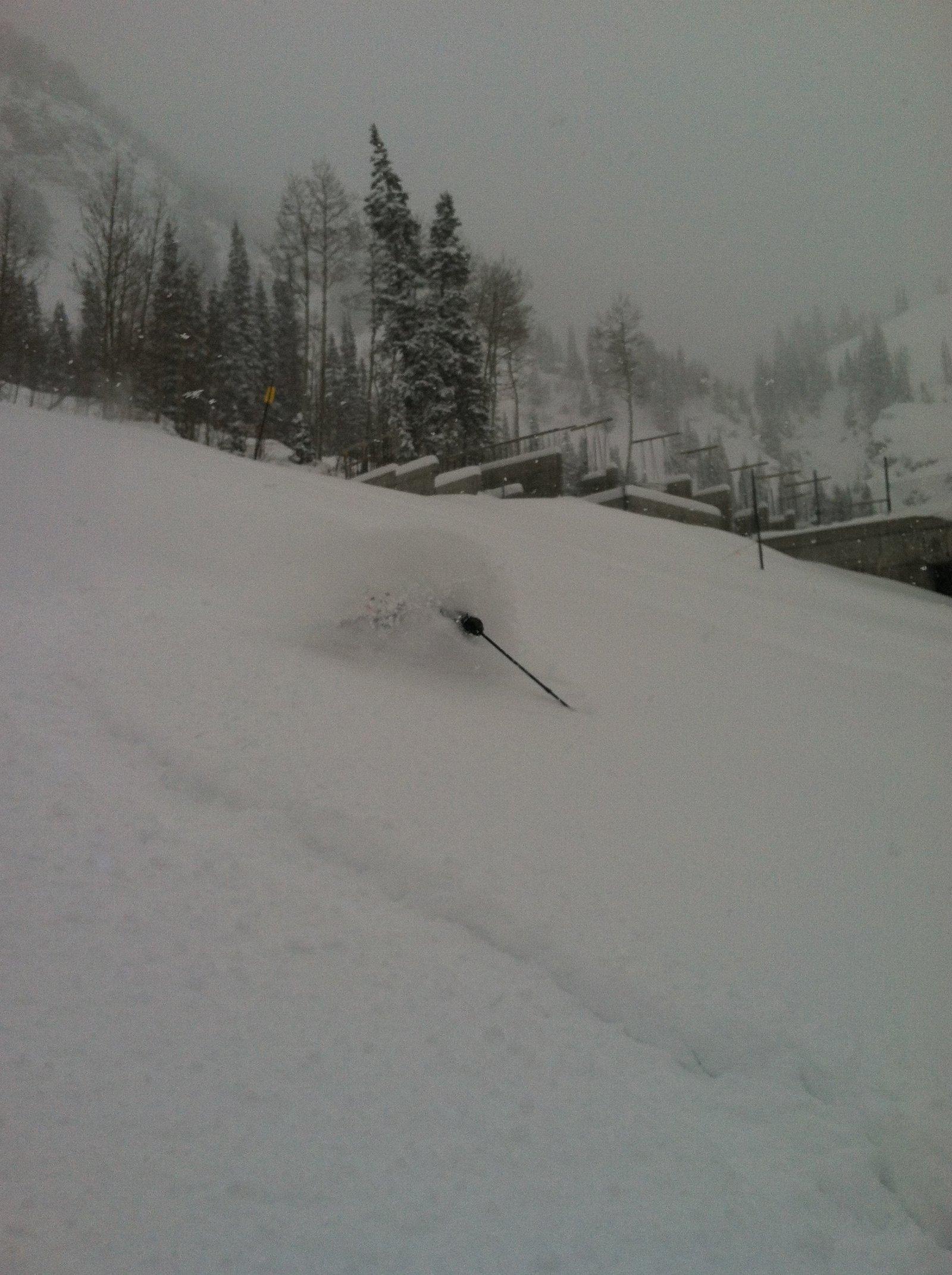 Yesterday @ Snowbird