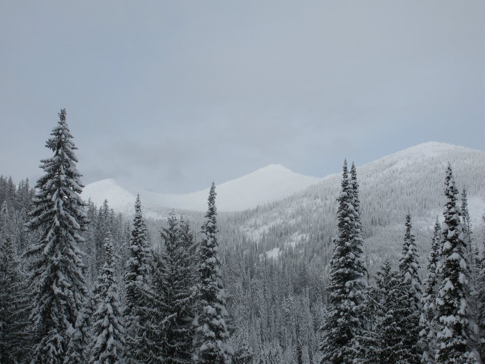 Christmas in Rossland TR