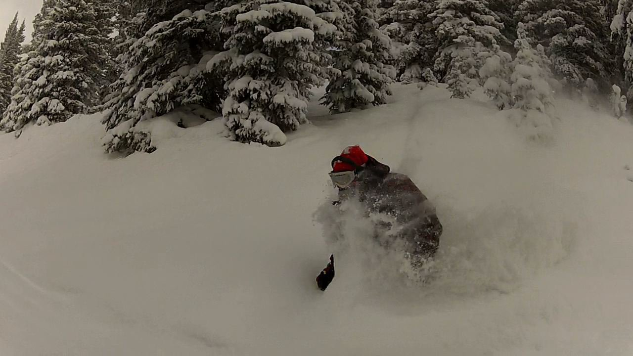 finding some freshies