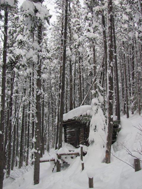Mt. Proctor Cabin