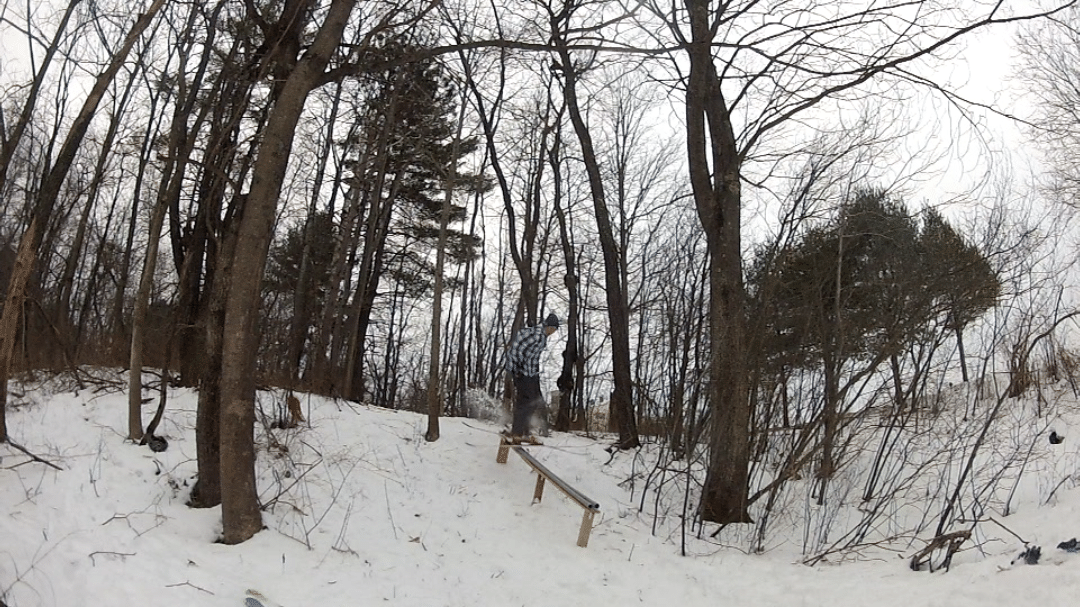 rail in the woods