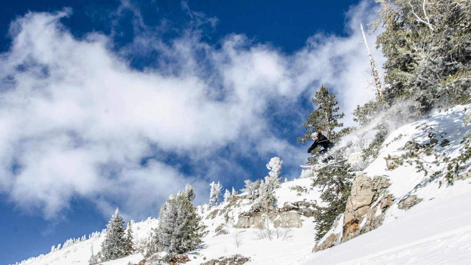 Blue skies at Alta