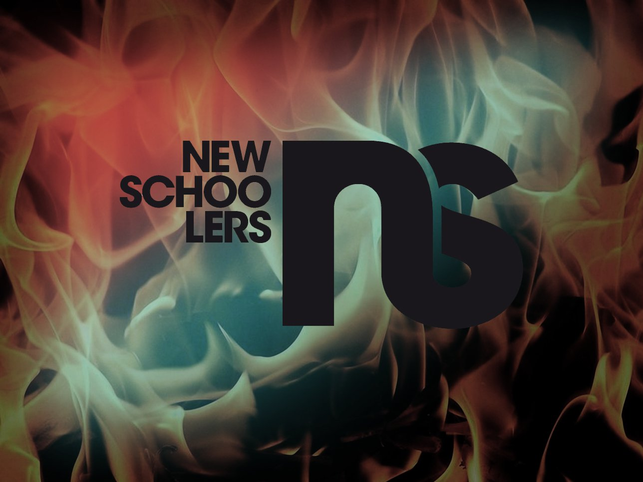 NS Logo 1