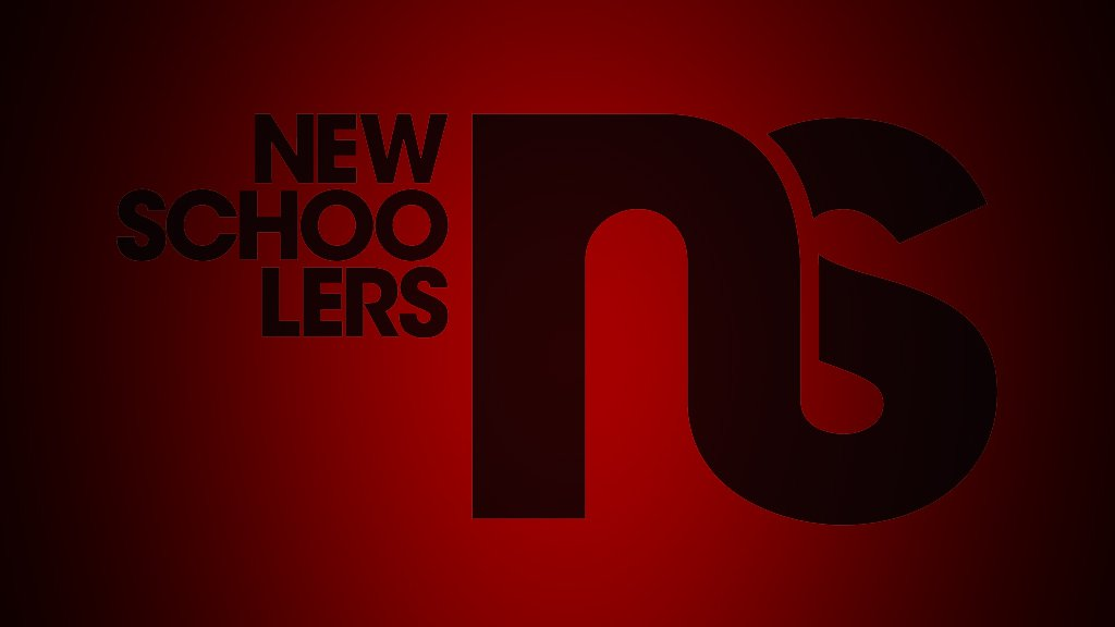 NS Logo 2