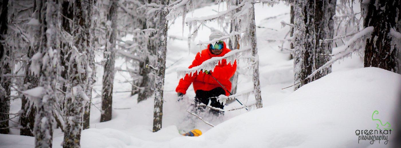 tree skiin'