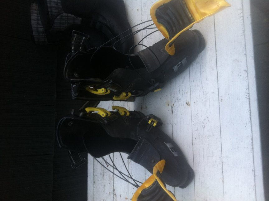 Bumble Bee Pro