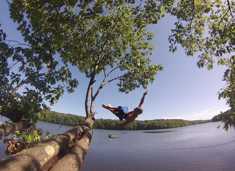 Flipping Outta Trees